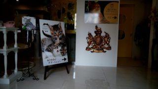 Cat Cafe PuPu Mignon(キャット カフェ ププミニョン)